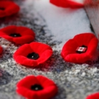 WGSS Remembers: Past & Present