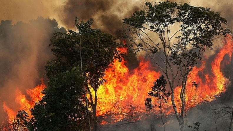 Burning Up: The Amazon Rainforest