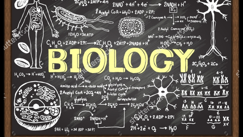 Tricks and Tips for Surviving AP Biology